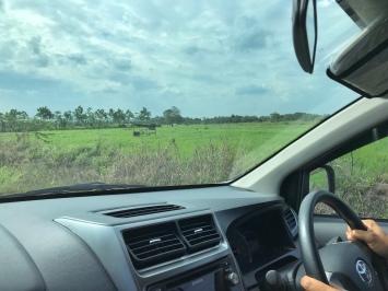 Snapshot di Kecamatan Sanga-Sanga